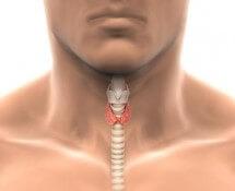 щитовидная железа симптомы заболевания у мужчин фото