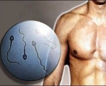 тест на бесплодие у мужчин