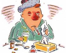простуда и лечение имбирем