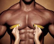 тренировки для груди